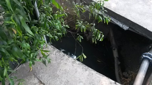 Big open holes on pavement