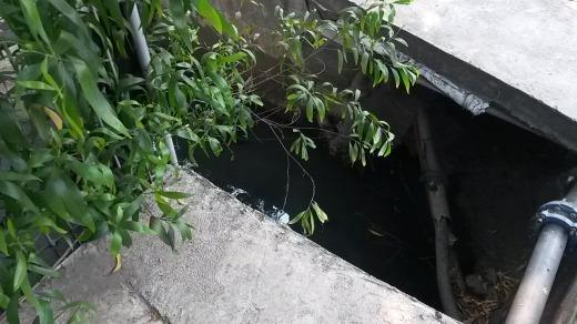 Big open holes on pavement