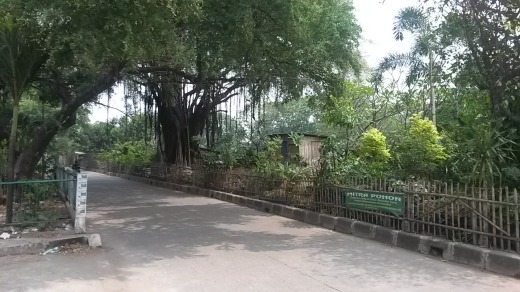 Tanjung Duren Canal District 5