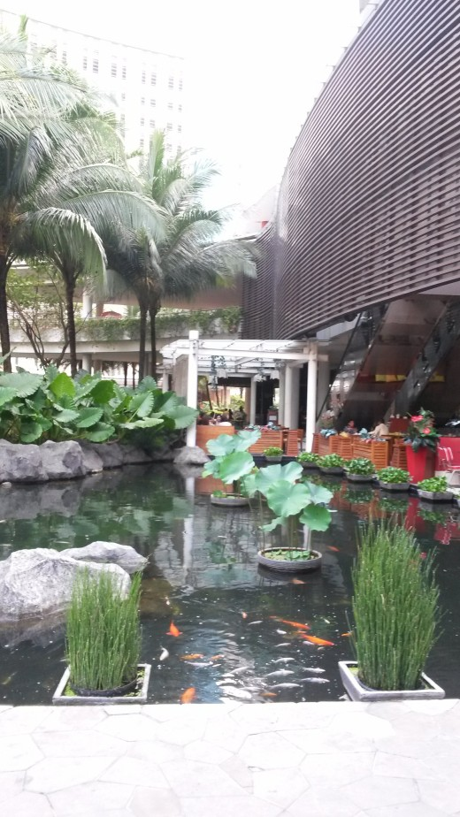 Tribeca Gardens pond